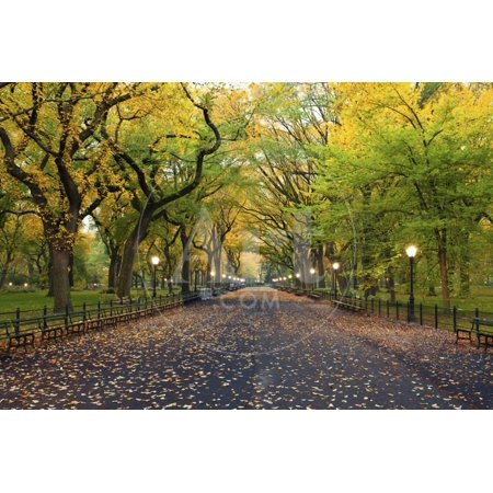 Central Park. Image of the Mall Area in Central Park, New York City, USA at Autumn. Print Wall Art By Rudy (Dickson City Mall)