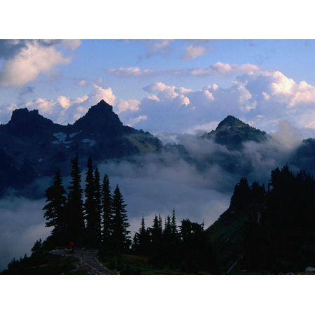 Mist Shrouding the Valleys of the Paradise Area Trails, Mt. Rainier National Park, USA Print Wall Art By John Elk -