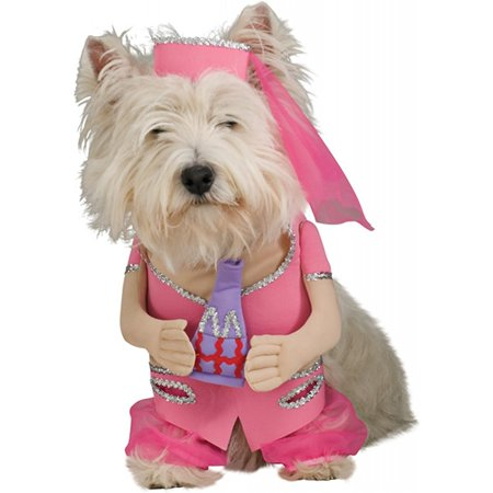 I Dream of Jeannie Dog Pet Pet Costume - X-Large, The I Dream of Jeannie Pet Costume includes a harem style one piece dress and hat. By Halloween Resource Center Inc Ship from US