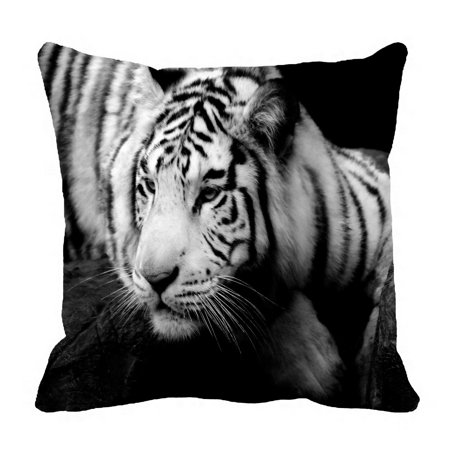 Auburn Tigers Throw Pillow - PHFZK Animal Pillow Case, Lazy Siberian Tiger Black and White Pillowcase Throw Pillow Cushion Cover Two Sides Size 20x20 inches
