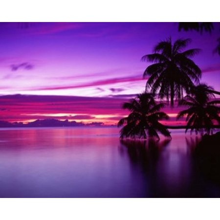 15 Poster Print - South Pacific Morea Poster Print by Panoramic Images (15 x 12)