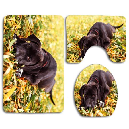 XDDJA Fall Puppy 3 Piece Bathroom Rugs Set Bath Rug Contour Mat and Toilet Lid Cover - image 1 of 2