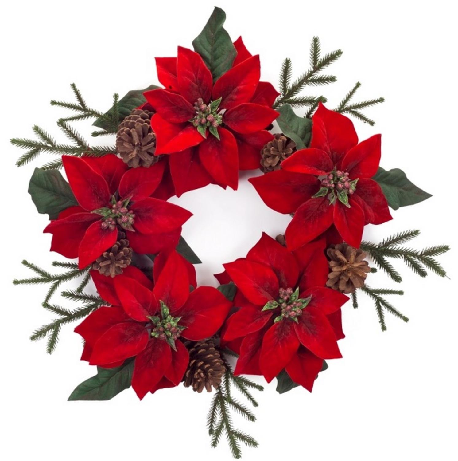 Pack of 2 Decorative Red Velvet Poinsettia Flower and Pine Cone Artificial Christmas Wreaths 30""