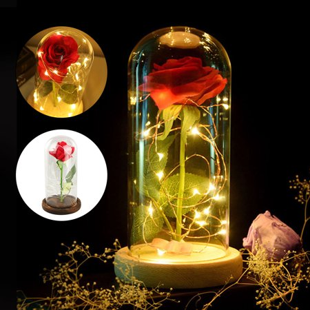 Style Dome Light (Rose Light Bottle, EEEKit Beauty and The Beast Rose Decor Light Red Rose Glass Dome LED Fairy String Lights for Valentines' Day Wedding Anniversary)