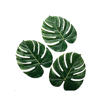 Palm Leaves for Luau, Hawaiian Party, Jungle Theme, 24 - Luau Themes