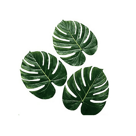 Palm Leaves for Luau, Hawaiian Party, Jungle Theme, 24 (Hawaiian Attire For Party)