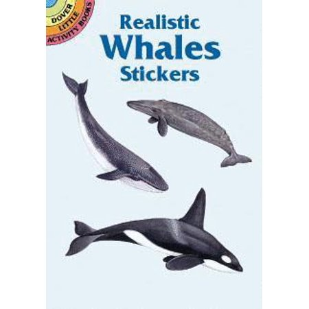 Dover Little Activity Books: Realistic Whales Stickers (Paperback)