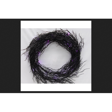 Sienna Battery Operated Wreath Halloween Decoration Black 14 in. W 1 pk