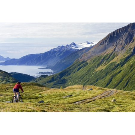 Mountain Biking The Lost Lake Trail With The Town Of Seward And Resurrection Bay In The Distance Seward Alaska Chugach National Forest Poster Print by Doug Demarest  Design