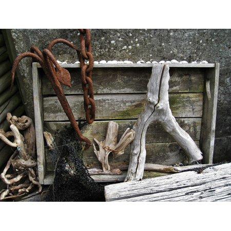 Rusty Anchor (Canvas Print Drift Wood Rusty Flotsam Beach Still Life Anchor Stretched Canvas 10 x 14 )