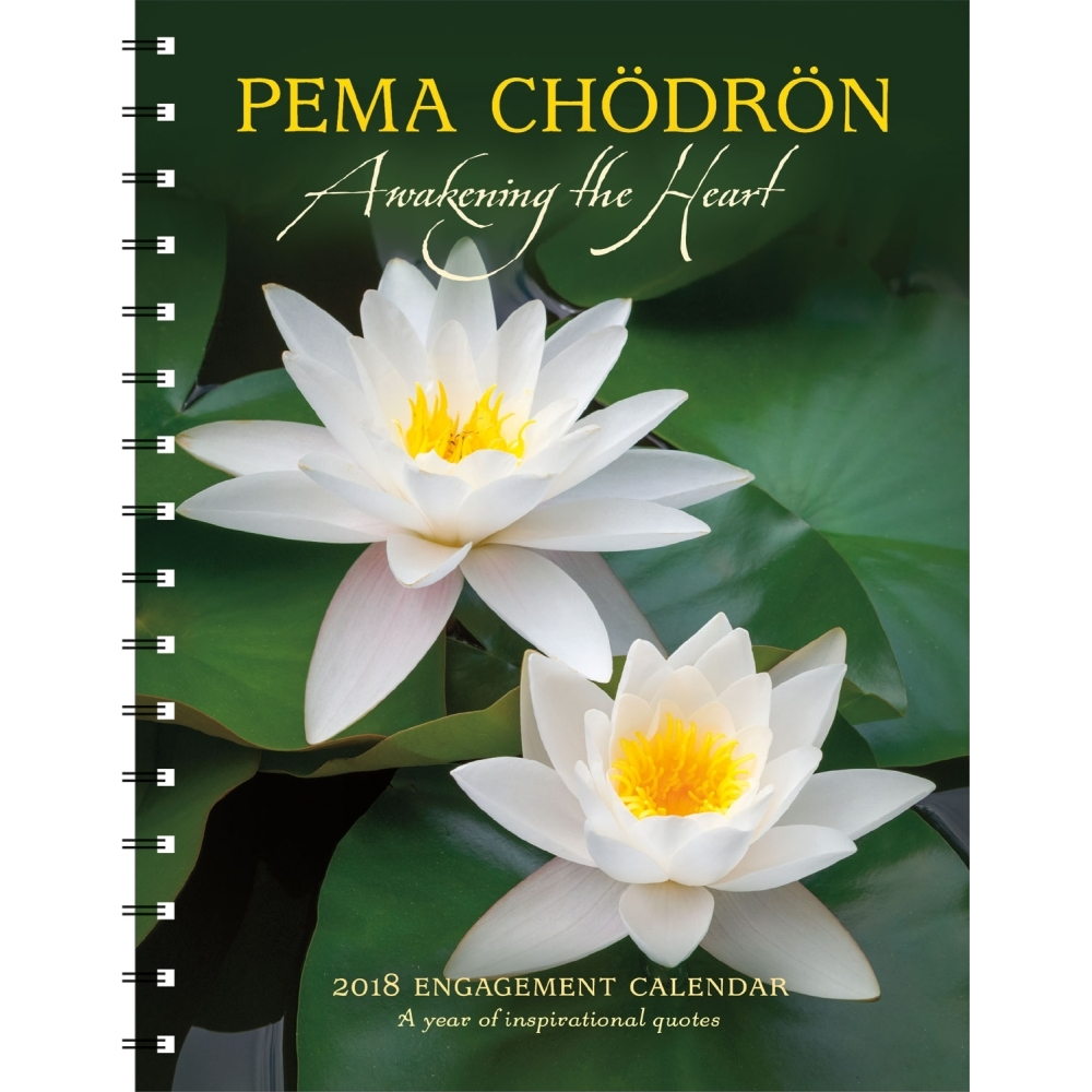 2018 Pema Chodron Planner Inspirational Quotes By Amber Lotus