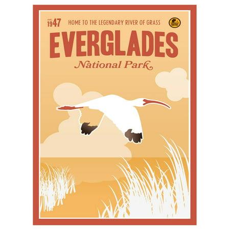 Everglades National Park, Florida Travel Art Print Poster by Matt Brass (9