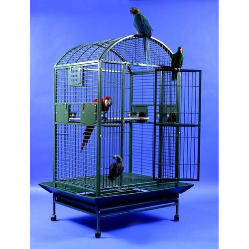 A&E Cage Co. Extra Large Dome Top Bird Cage by A&E Cage Co.