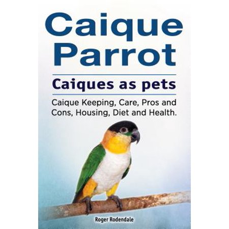 Caique parrot. Caiques as pets. Caique Keeping, Care, Pros and Cons, Housing, Diet and Health. -