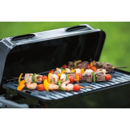 weber 1 burner go anywhere gas grill best grills accessories fan shop. Black Bedroom Furniture Sets. Home Design Ideas
