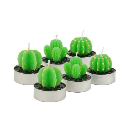 Decorative Cactus Candles TeaLight Candles Quality Cactus Tealight Candles Tea Light Candle Holder Handmade Delicate Succulent Cactus Candles for Birthday Party Wedding Spa Home Decoration