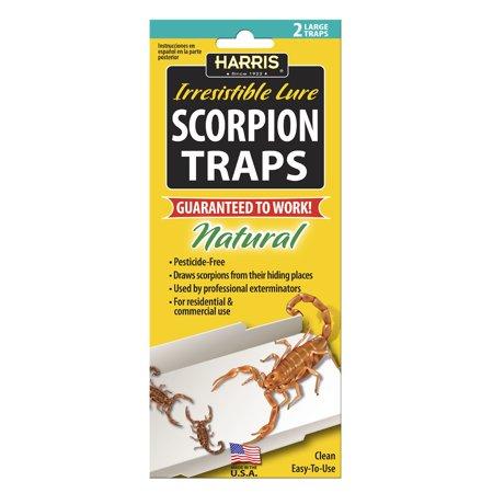 Harris Scorpion Traps 2 Pack