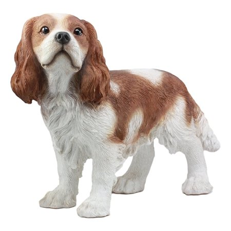 Dog Breed Statues (Ebros Life Sized Realistic Adorable Cavalier King Charles Spaniel Dog Statue 16