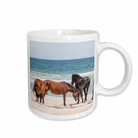 3dRose Wild mustangs, Currituck NWR, Corolla, Outer Banks, North Carolina - Ceramic Mug, 11-ounce
