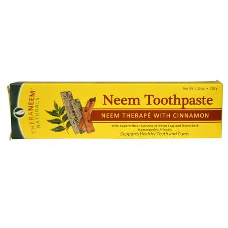 Organix South  TheraNeem Naturals  Neem Therapé with Cinnamon  Neem Toothpaste  4 23 oz  120