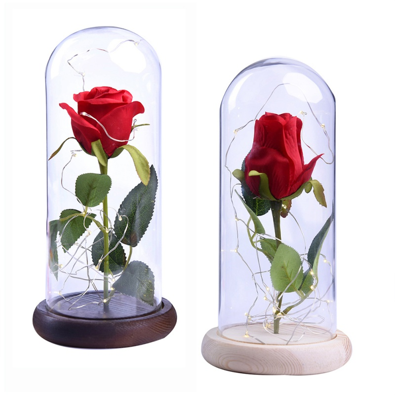 Birthday Gift Red Silk Rose in a Glass Dome Home Lamp Decor Beauty and the Beast