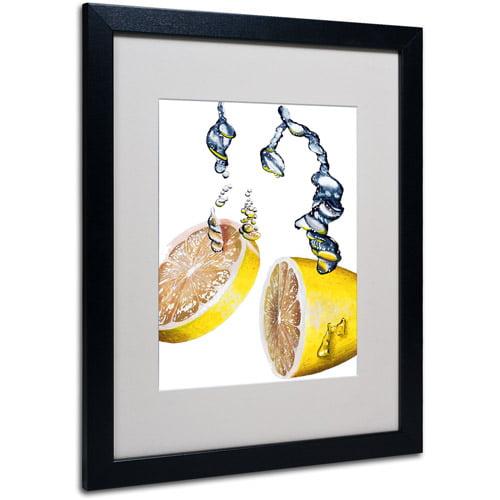 """Trademark Fine Art """"Lemon Splash II"""" Framed Matted Art by Roderick Stevens"""