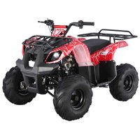 Youth ATV by FamilyGoKarts Red Spider T125D Utility ATV