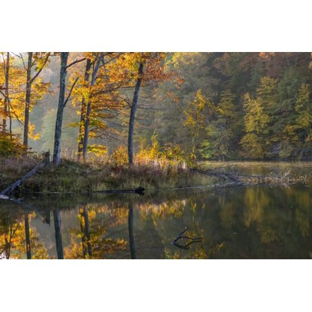 Backlit Trees on Lake Ogle in Autumn in Brown County Sp, Indiana Print Wall Art By Chuck