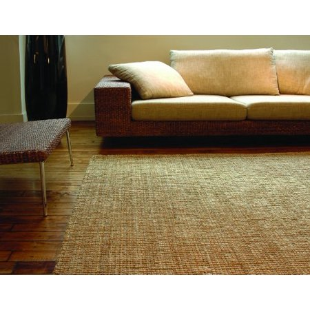 Anji Mountain AMB0300-0046 Andes Jute Area Rug, Natural, 4 x 6-Feet