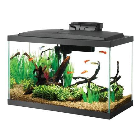 Aqueon Fish Tank Starter Kit with LED Lighting, 10 Gallon ()