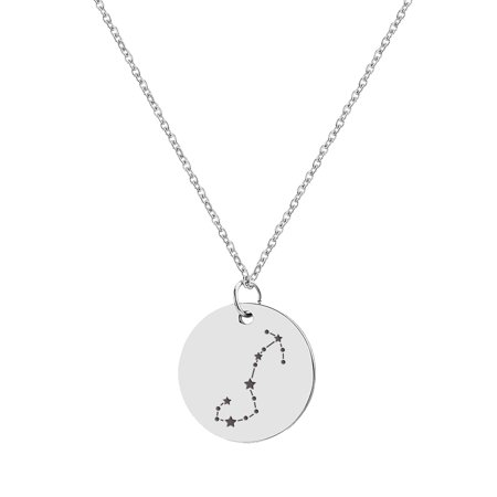 Anavia Round Scorpio Constellation Zodiac Star Sign Stainless Steel Silver Disc 22mm Pendant Jewelry with Gift Box (Zodiac Watch)