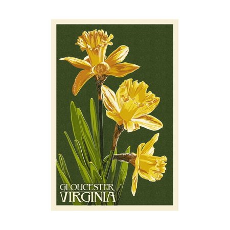 Gloucester, Virginia - Daffodil Print Wall Art By Lantern Press
