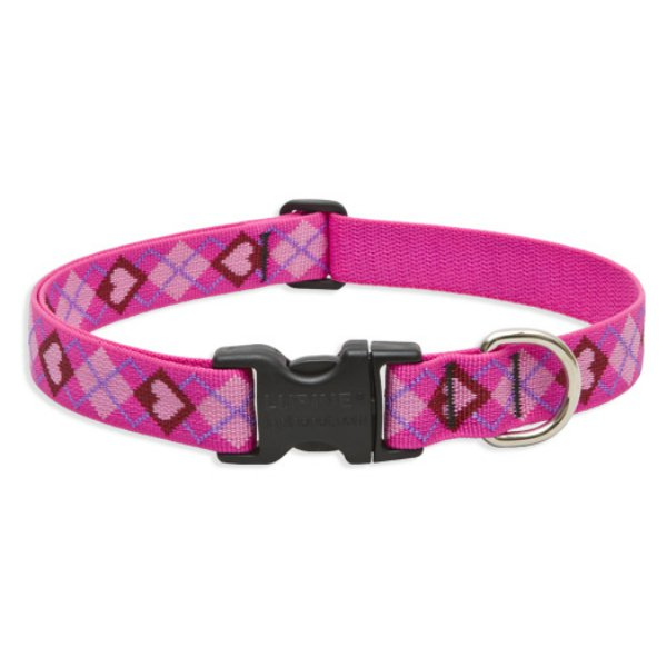 1in Puppy Love 16-28 Adj.. Collar