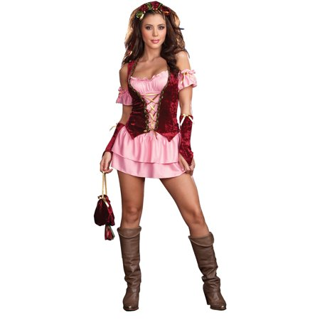 Dreamgirl PLEASURE FAIRE WENCH XL 14-16-RL5863XL costume - image 1 of 1