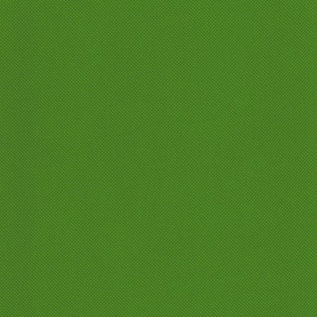 SHASON TEXTILE PRO TUFF OUTDOOR FABRIC, BRIGHT GREEN. (By The Yard)