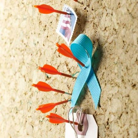 Design Ideas Archery Push Pins, Set of 8 Orange Arrows (Arrow Of Light Ceremony Ideas)