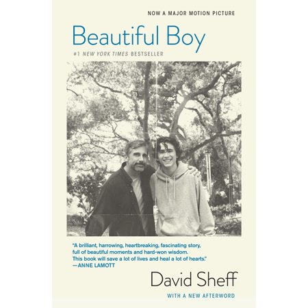 Beautiful Boy (Tie-In) : A Father's Journey Through His Son's - Is Yoshi A Boy