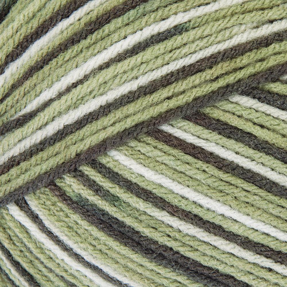 Mary Maxim Maximum Value Yarn - Green Ombre