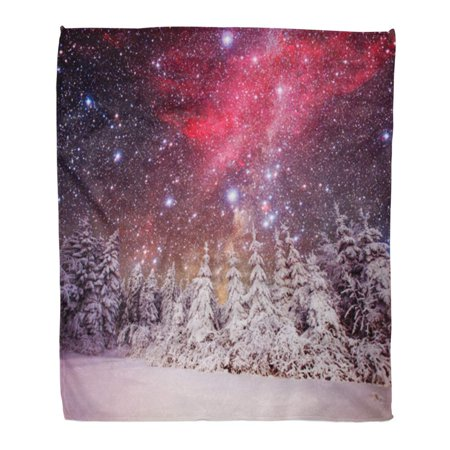 Winter Wonderland Flannels (ASHLEIGH Throw Blanket Warm Cozy Print Flannel Wonderland Dairy in The Winter Woods Some Highlights and Snow Flakes Comfortable Soft for Bed Sofa and Couch 58x80 Inches )
