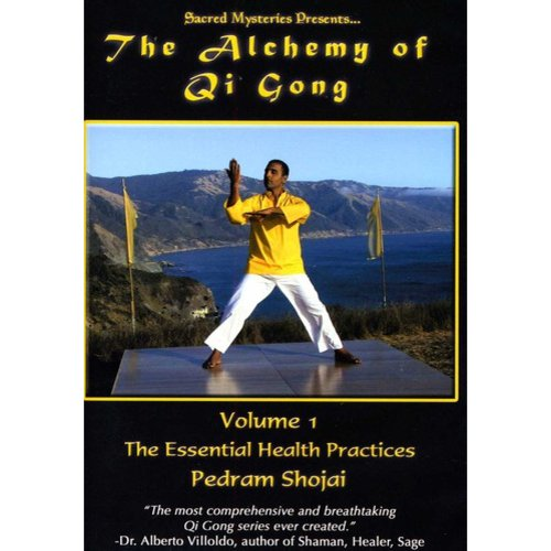 The Alchemy of Qi Gong Volume II: Shaolin Basics: Building the Foundation by Victory Multimedia