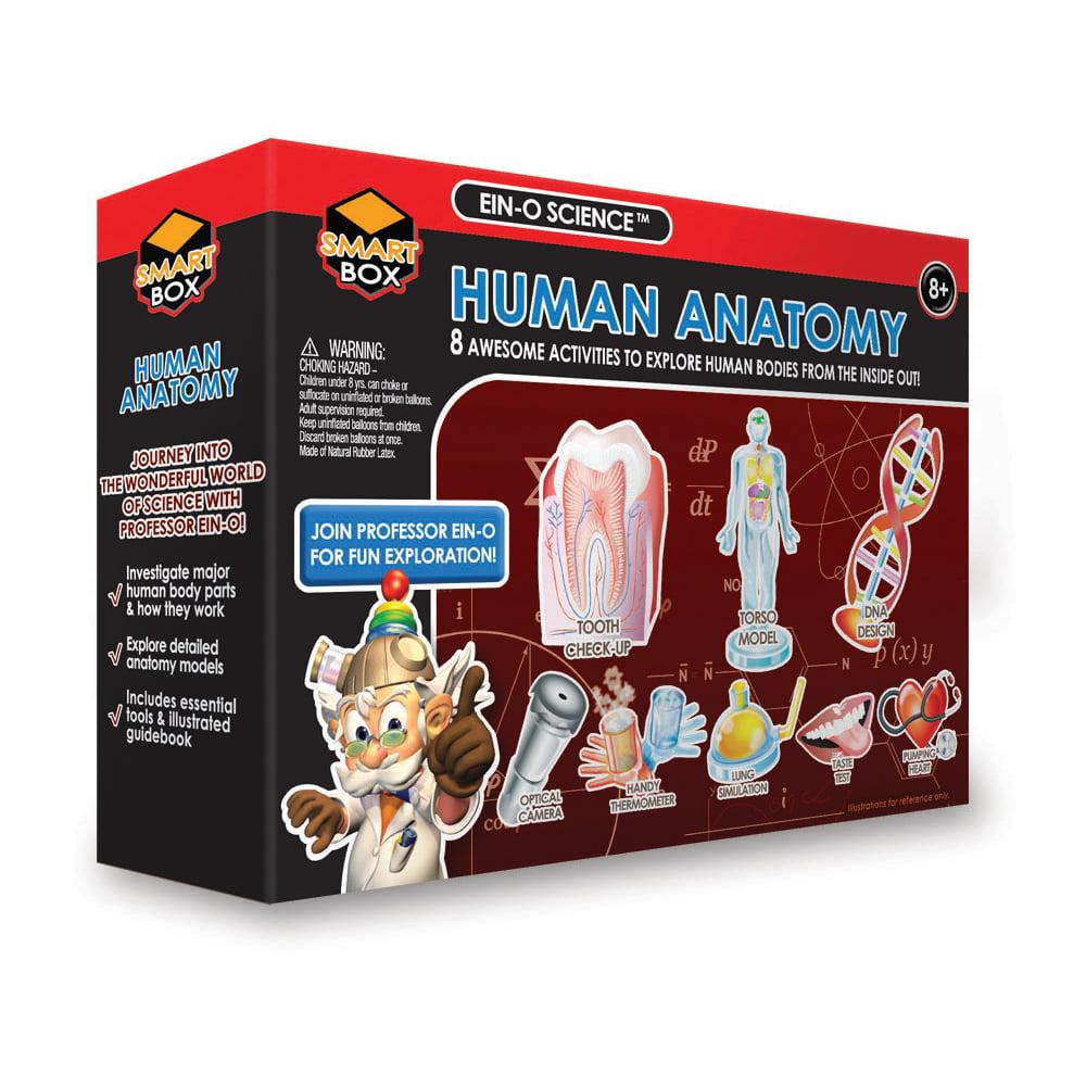 EIN-O Science Smart Box - Human Anatomy