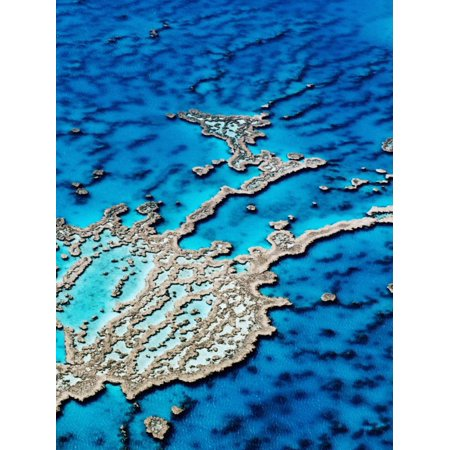 Hardy Reef, Near Whitsunday Islands, Great Barrier Reef, Queensland, Australia Print Wall Art By Holger (Shops For Sale In Australia)