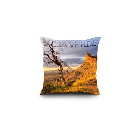 Mesa Verde National Park Colorado Lone Tree Lantern Press Photograph 1