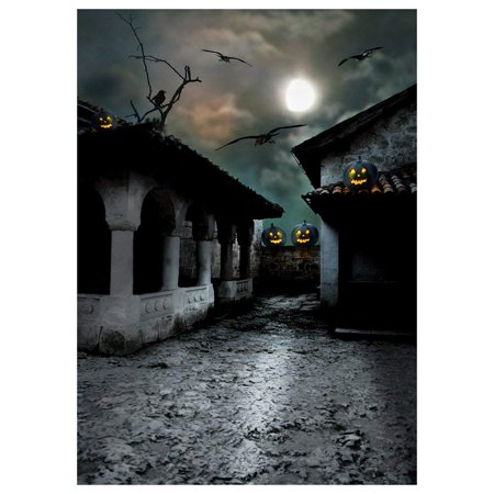 ABPHOTO Polyester Photography Background Photo Backdrops Magic Theme Horror night abandoned retro tile house, pumpkin lights, branches, crows, moon for Halloween 7x5ft (Inside The Magic Halloween Horror Nights)