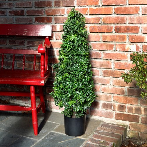 Charlton Home Boxwood Cone Floor Foliage Topiary In Planter