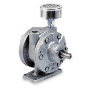 GAST 8AM-FRV-75 Air Motor,5 HP,175 cfm,2500 rpm