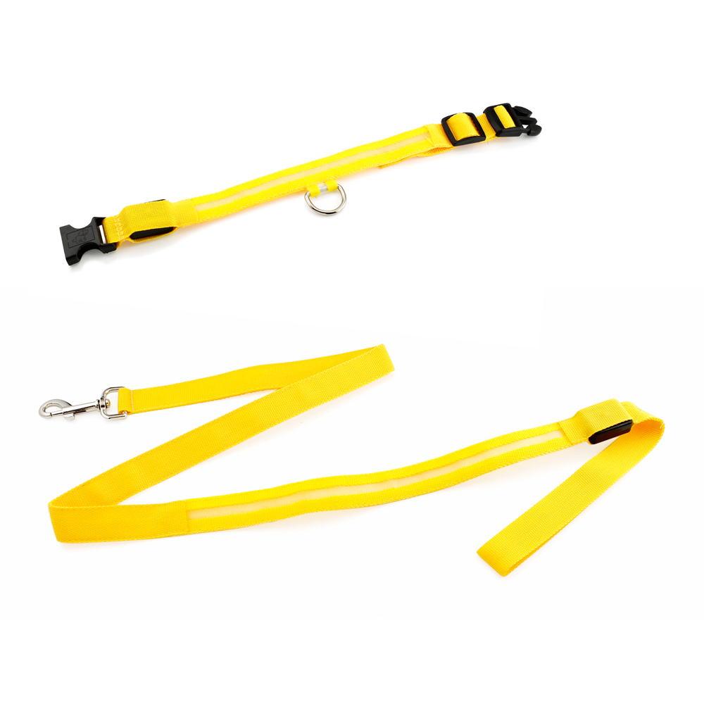 Medium LED Lights COLOR Light Up Pet Dog  Night Safety Waterproof Nylon Neck Adjustable Collar + Leash Bundle