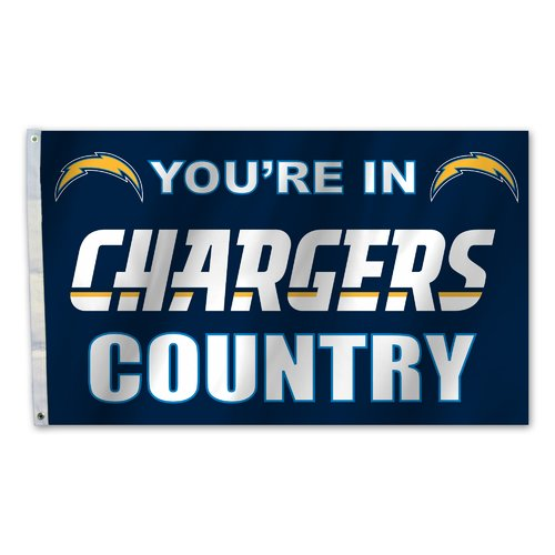 Team Pro-Mark NFL Traditional Polyester 3 X 5 ft. Flag