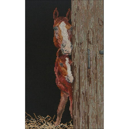 Horse Cross Stitch - Horse And Foal On Aida Counted Cross Stitch Kit, 6