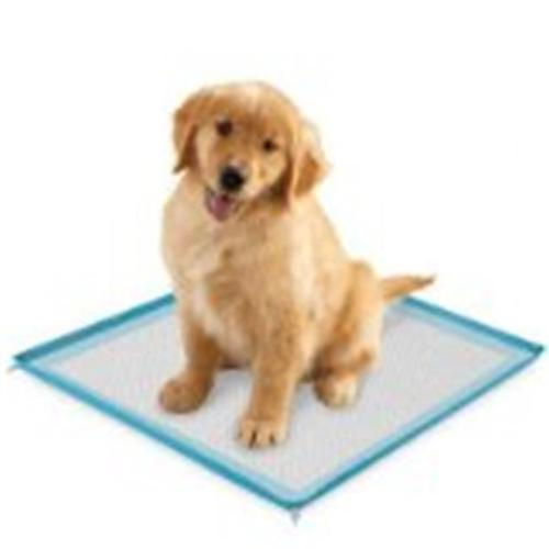 Clearquest Silicone Puppy Pad Holder
